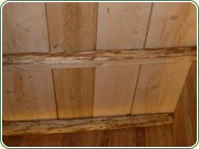 planche de bois pour mur intrieur amazing tete de lit en planche de coffrage a legjobb tlet a. Black Bedroom Furniture Sets. Home Design Ideas
